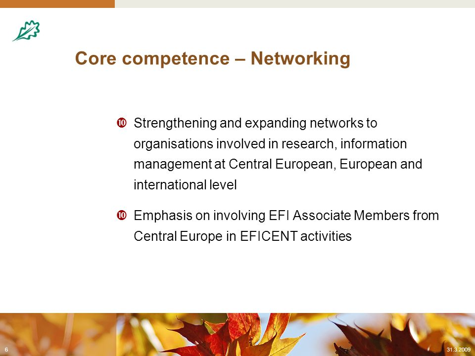 Core competence – Networking  Strengthening and expanding networks to organisations involved in research, information management at Central European, European and international level  Emphasis on involving EFI Associate Members from Central Europe in EFICENT activities 31.3.20096