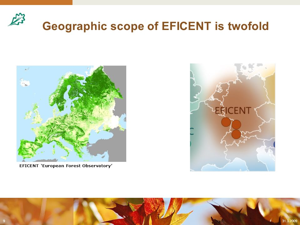 The economic loss in value of Central European forests as a consequence of changes in climate  Use of forest growth models under different IPCC scenarios  Economic evaluation: Soil expectation value as measure for defining the willingness to pay for forest land Identify break-even-points  Links to related project activities at regional and European level (e.g.