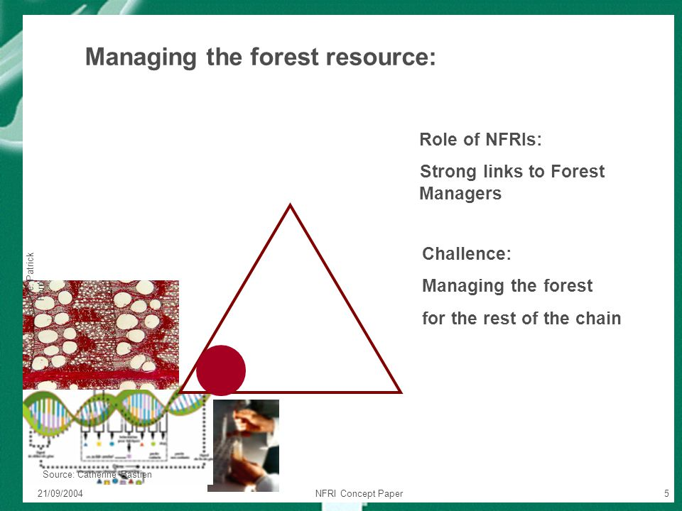 21/09/2004NFRI Concept Paper5 Source: Patrick Perr é Source: Catherine Bastien Role of NFRIs: Strong links to Forest Managers Managing the forest reso