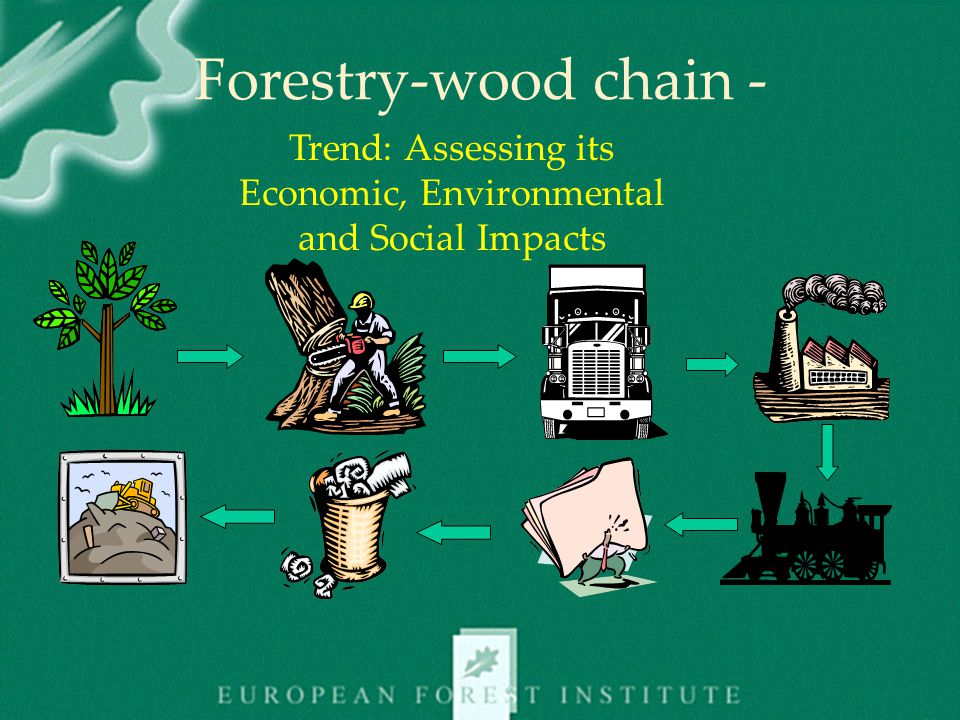 Forestry-wood chain - Trend: Assessing its Economic, Environmental and Social Impacts