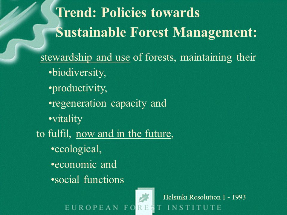 21/09/2004NFRI Concept Paper5 Source: Patrick Perr é Source: Catherine Bastien Role of NFRIs: Strong links to Forest Managers Managing the forest resource: Challence: Managing the forest for the rest of the chain