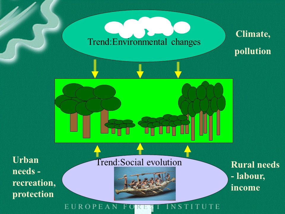 21/09/2004NFRI Concept Paper9 Society demands from the forests Perception of forest - based products - market developments Forests for people - recreation, health, culture New questions in social sciences (geography, sociology, economy,etc.) vs.