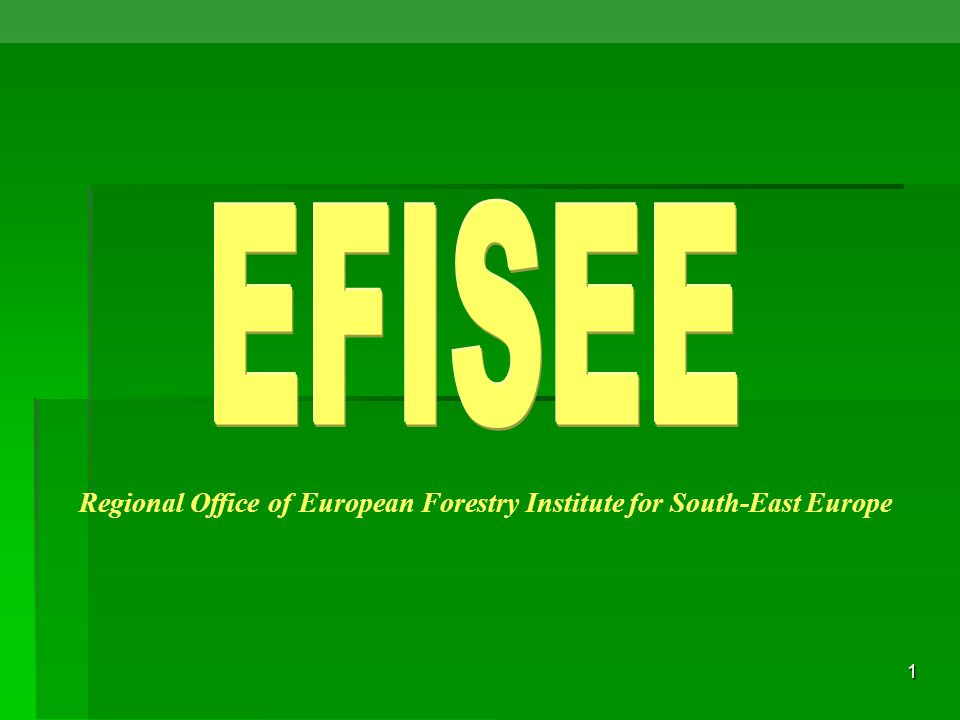 1 Regional Office of European Forestry Institute for South-East Europe