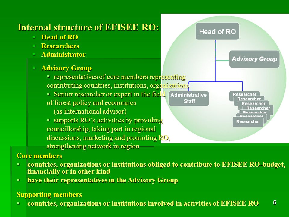 5 Internal structure of EFISEE RO:  Head of RO  Researchers  Administrator  Advisory Group  representatives of core members representing contributing countries, institutions, organizations  Senior researcher or expert in the field of forest policy and economics (as international advisor)  supports RO's activities by providing councillorship, taking part in regional discussions, marketing and promoting RO, strengthening network in region Core members  countries, organizations or institutions obliged to contribute to EFISEE RO-budget, financially or in other kind  have their representatives in the Advisory Group Supporting members  countries, organizations or institutions involved in activities of EFISEE RO