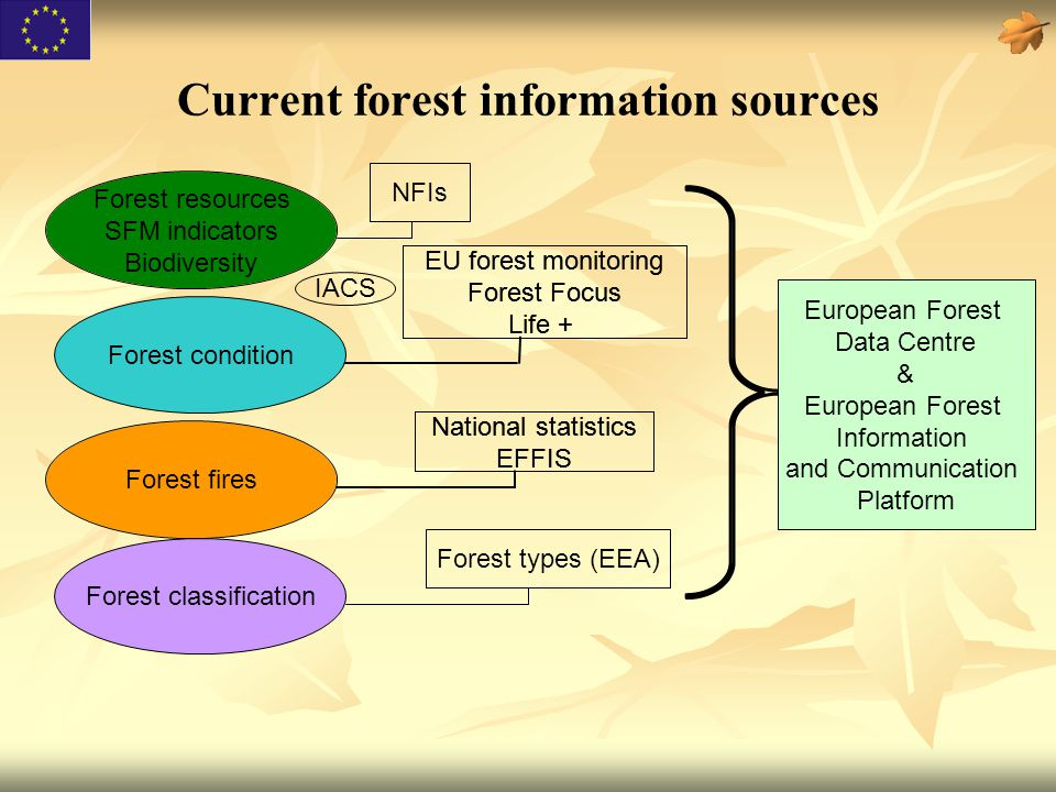 Current forest information sources Forest resources SFM indicators Biodiversity Forest fires National statistics EFFIS EU forest monitoring Forest Foc