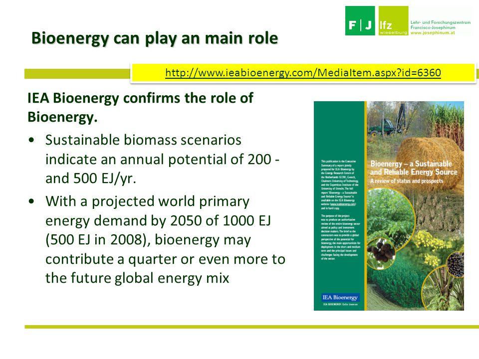 Bioenergy can play an main role IEA Bioenergy confirms the role of Bioenergy.