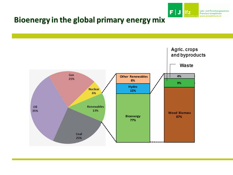 Waste Agric. crops and byproducts Bioenergy in the global primary energy mix