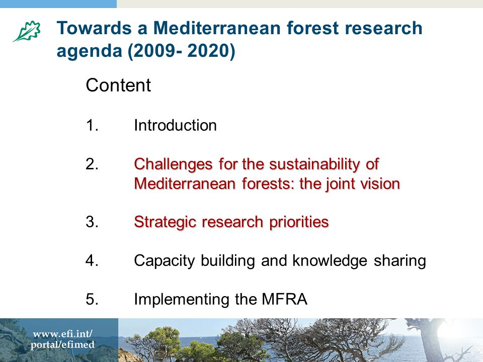 Towards a Mediterranean forest research agenda (2009- 2020) Content 1.Introduction Challenges for the sustainability of Mediterranean forests: the joint vision 2.Challenges for the sustainability of Mediterranean forests: the joint vision Strategic research priorities 3.Strategic research priorities 4.Capacity building and knowledge sharing 5.Implementing the MFRA