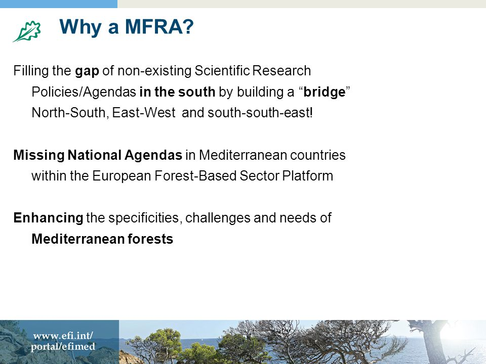 Why a MFRA.