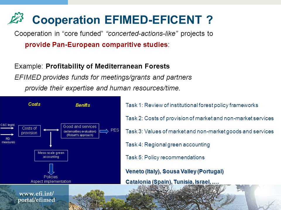 Cooperation EFIMED-EFICENT .