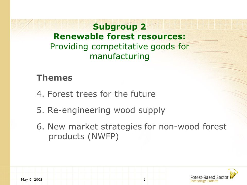 May 9, 20051 Subgroup 2 Renewable forest resources: Providing competitative goods for manufacturing Themes 4.