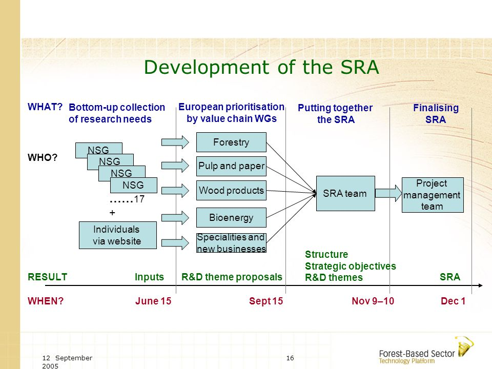 12 September 2005 16 Development of the SRA NSG Individuals via website June 15 Bottom-up collection of research needs Forestry Pulp and paper Wood products Bioenergy Specialities and new businesses …… 17 + European prioritisation by value chain WGs Sept 15 SRA team Putting together the SRA Nov 9–10 WHAT.