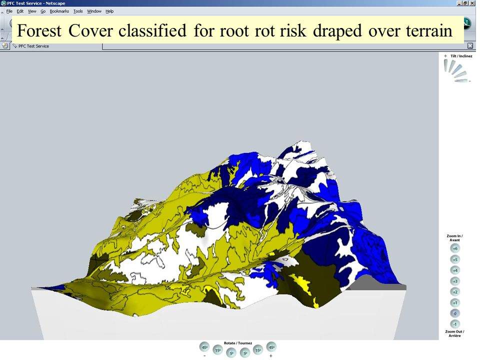 Forest Cover classified for root rot risk draped over terrain