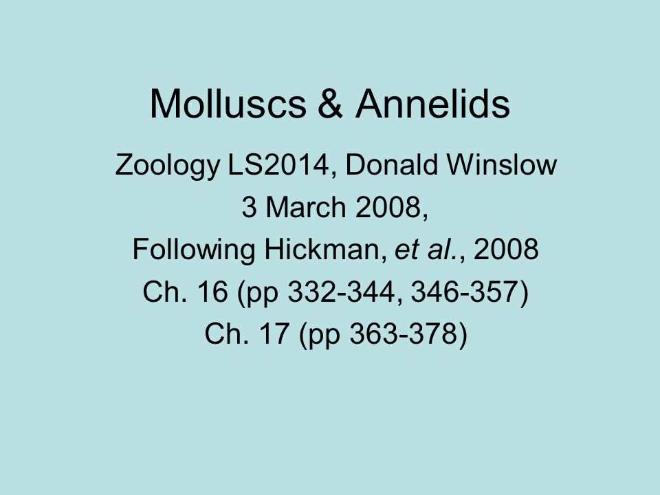 Molluscs & Annelids Protostome Spiral cleavage Mosaic development Eucoelomate Schizocoelous coelom formation Many have trochophore larvae