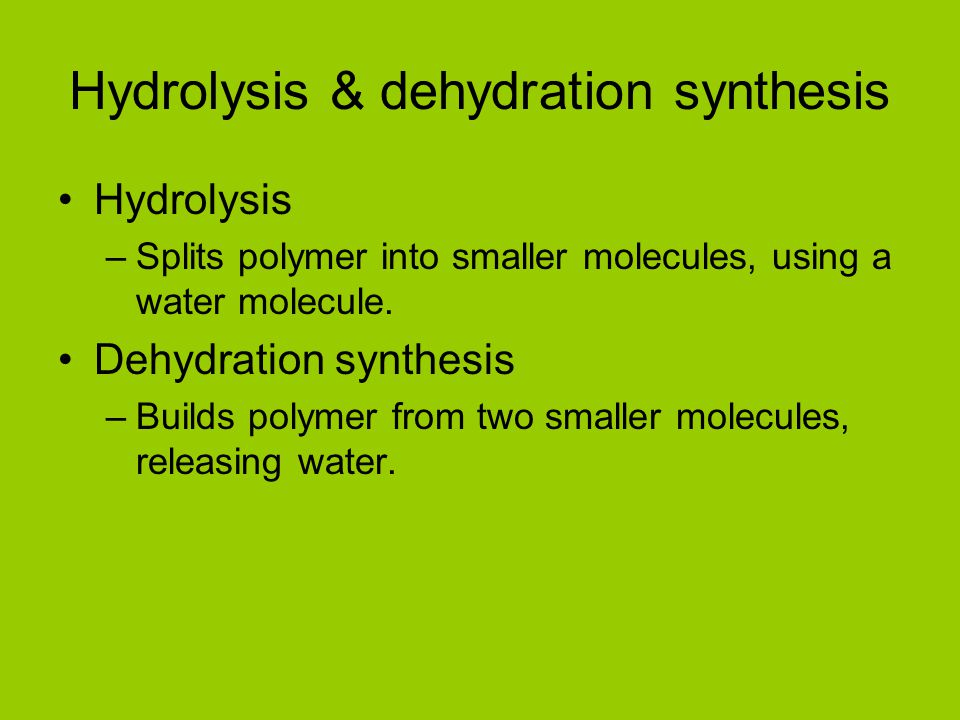 Hydrolysis & dehydration synthesis Hydrolysis –Splits polymer into smaller molecules, using a water molecule. Dehydration synthesis –Builds polymer fr