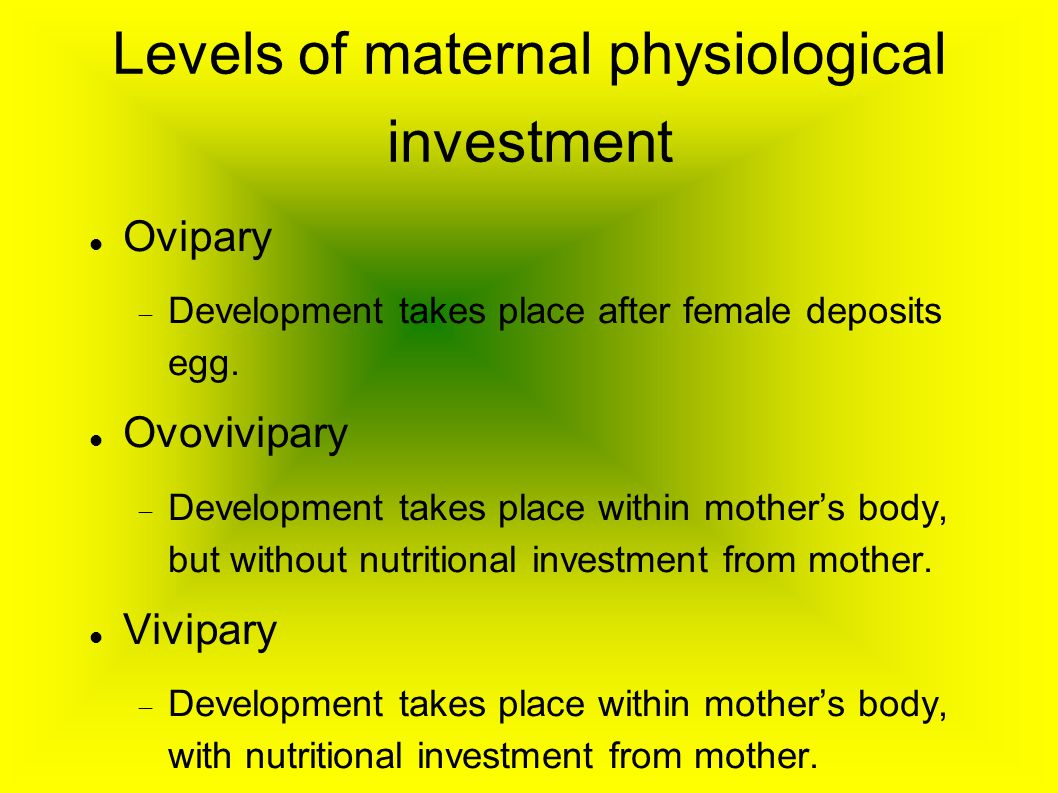 Levels of maternal physiological investment Ovipary  Development takes place after female deposits egg. Ovovivipary  Development takes place within