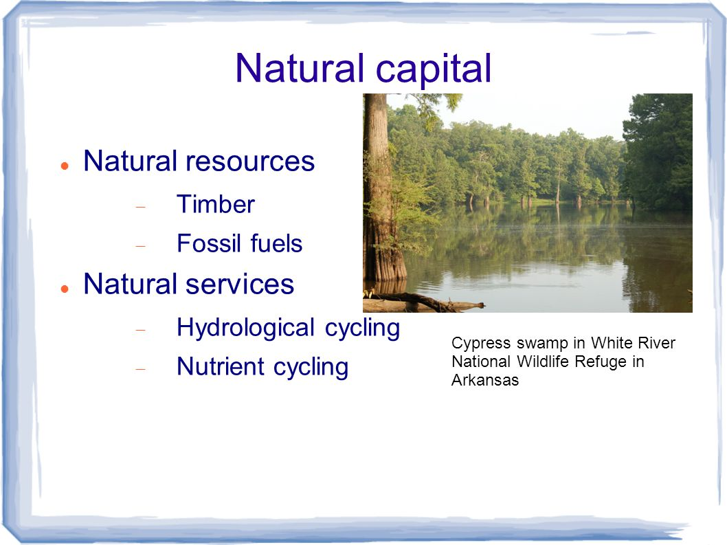 Natural capital Natural resources  Timber  Fossil fuels Natural services  Hydrological cycling  Nutrient cycling Cypress swamp in White River National Wildlife Refuge in Arkansas
