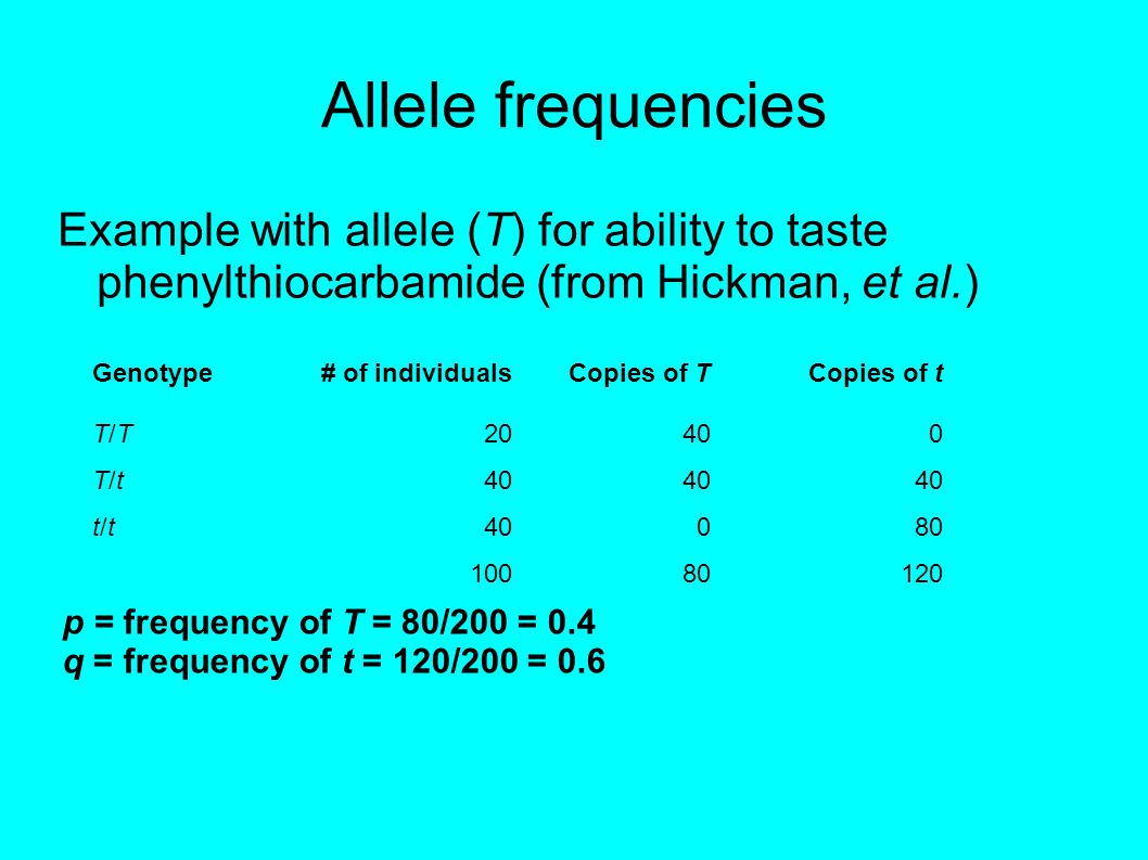 Allele frequencies Example with allele (T) for ability to taste phenylthiocarbamide (from Hickman, et al.) Genotype# of individualsCopies of TCopies of t T/TT/T20400 T/tT/t t/tt/t 080 10080120 p = frequency of T = 80/200 = 0.4 q = frequency of t = 120/200 = 0.6
