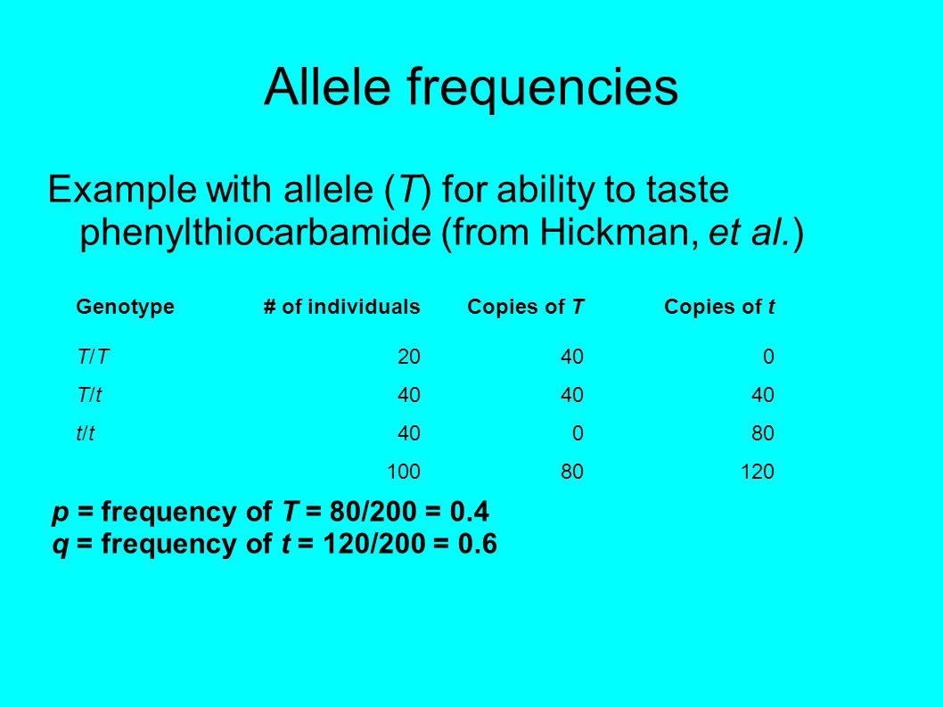 Forces that change allele frequencies Mutation Genetic drift Nonrandom mating—e.g.