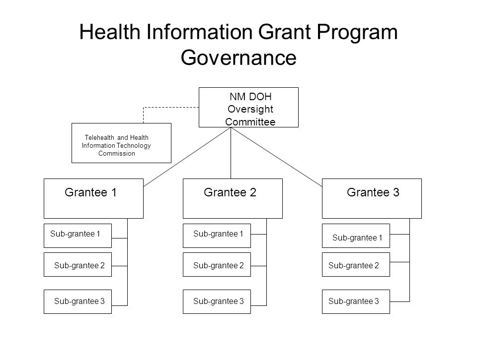Health Information Grant Program Governance NM DOH Oversight Committee Telehealth and Health Information Technology Commission Grantee 1Grantee 2Grantee 3 Sub-grantee 1 Sub-grantee 2 Sub-grantee 3 Sub-grantee 1 Sub-grantee 2 Sub-grantee 3