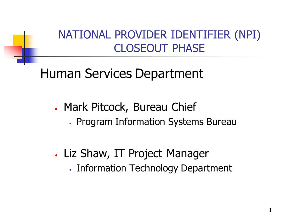 2 NPI Project Overview Meets the Federal requirement for a National Provider Identifier for HIPAA-covered health care providers and insurers NPI will generate efficiencies in the health care system Changes were required for the existing Omnicaid (Medicaid claims adjudication system) and the Transaction Interface Exchange (HIPAA transactions translator) Omnicaid is hosted by ACS, fiscal agent for HSD's Medicaid Management Information System.