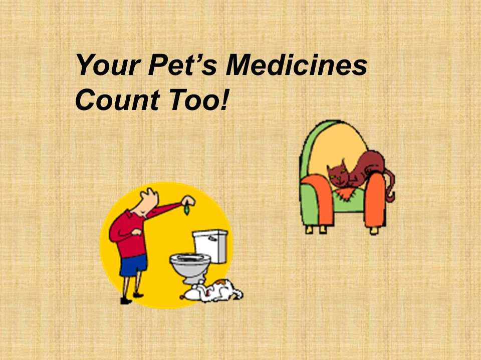 Your Pet's Medicines Count Too!