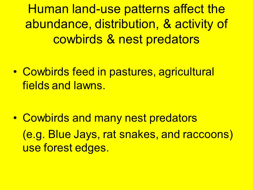 Human land-use patterns affect the abundance, distribution, & activity of cowbirds & nest predators Cowbirds feed in pastures, agricultural fields and
