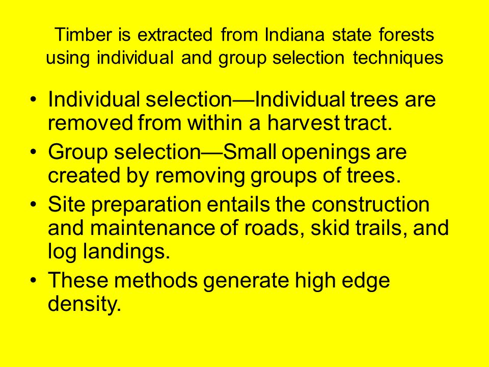 Timber is extracted from Indiana state forests using individual and group selection techniques Individual selection—Individual trees are removed from
