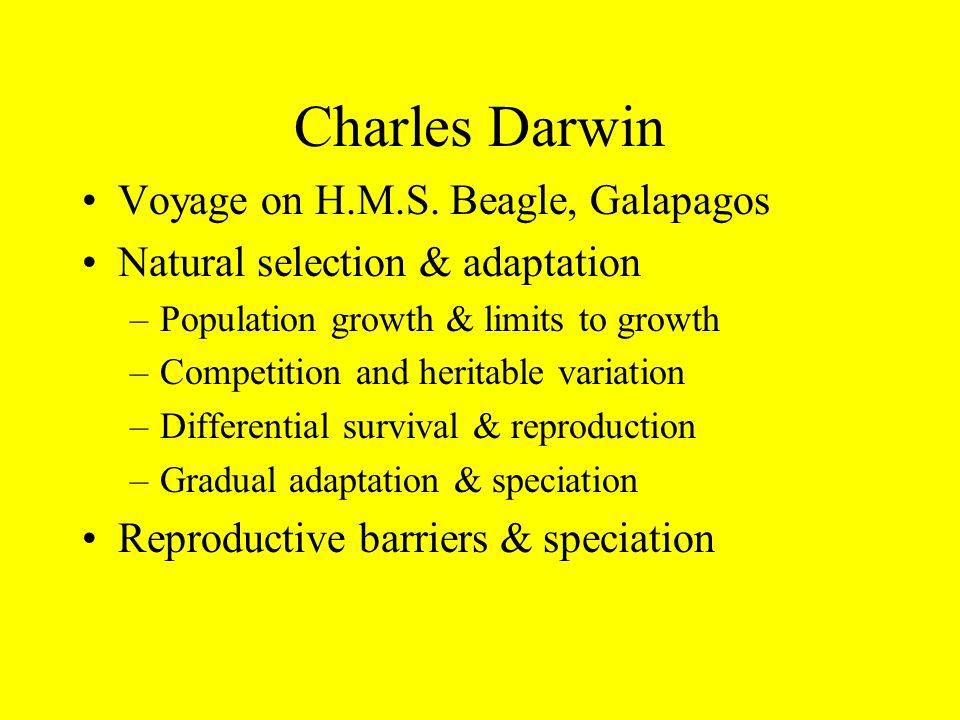 Charles Darwin Voyage on H.M.S.