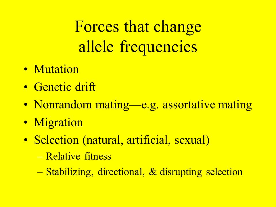 Forces that change allele frequencies Mutation Genetic drift Nonrandom mating—e.g.