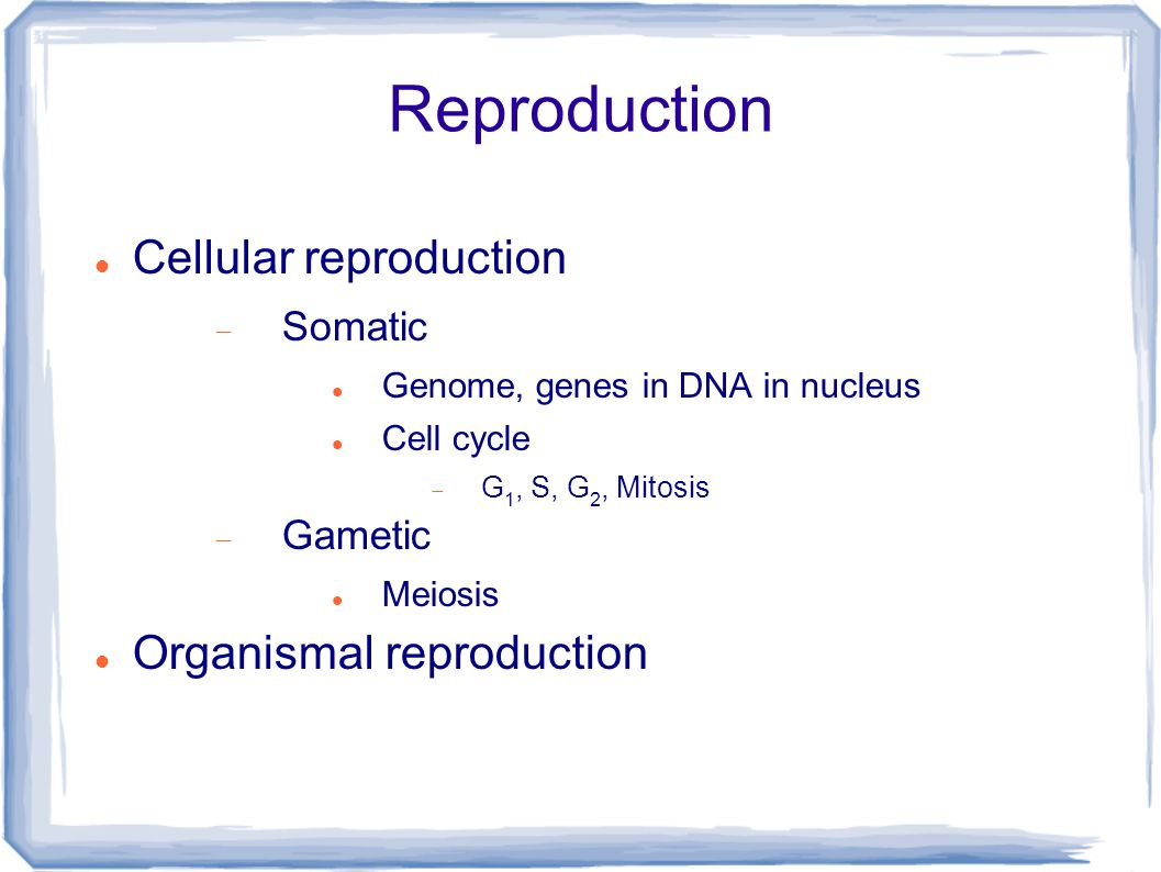 Reproduction Cellular reproduction  Somatic Genome, genes in DNA in nucleus Cell cycle  G 1, S, G 2, Mitosis  Gametic Meiosis Organismal reproduction