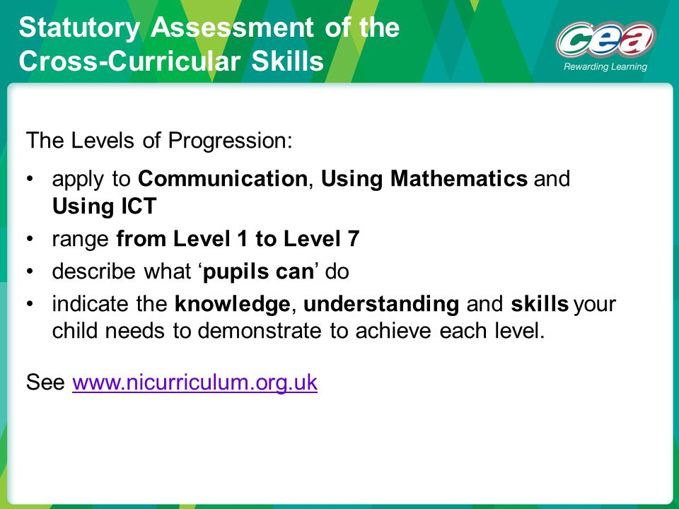 The Levels of Progression: apply to Communication, Using Mathematics and Using ICT range from Level 1 to Level 7 describe what 'pupils can' do indicat