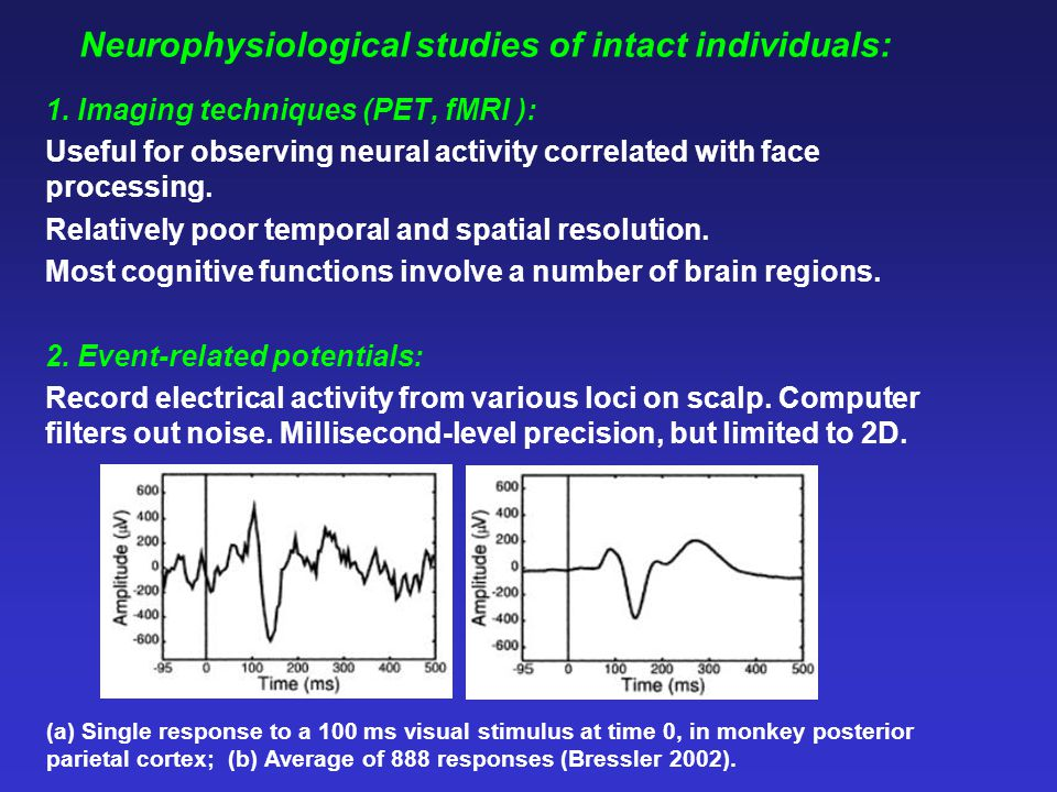 Neurophysiological studies of intact individuals: 1.