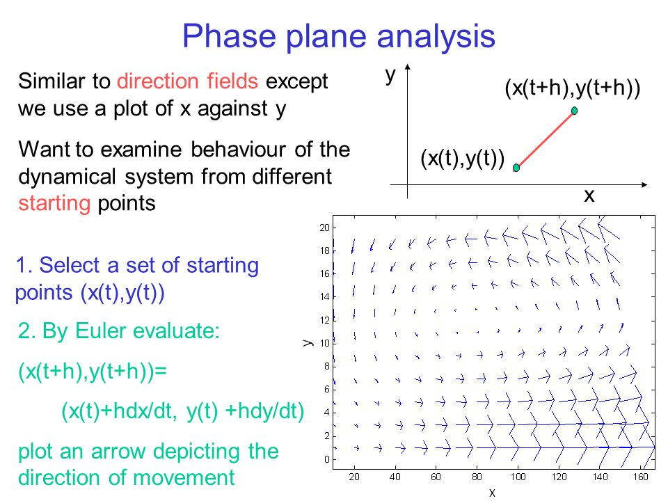 Phase plane analysis Similar to direction fields except we use a plot of x against y 2. By Euler evaluate: (x(t+h),y(t+h))= (x(t)+hdx/dt, y(t) +hdy/dt