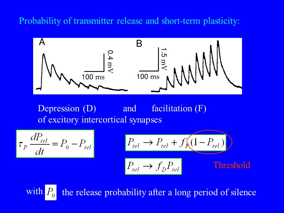 Probability of transmitter release and short-term plasticity: Depression (D)andfacilitation (F) of excitory intercortical synapses with the release pr