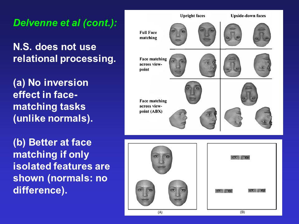 Delvenne et al (cont.): N.S. does not use relational processing. (a) No inversion effect in face- matching tasks (unlike normals). (b) Better at face