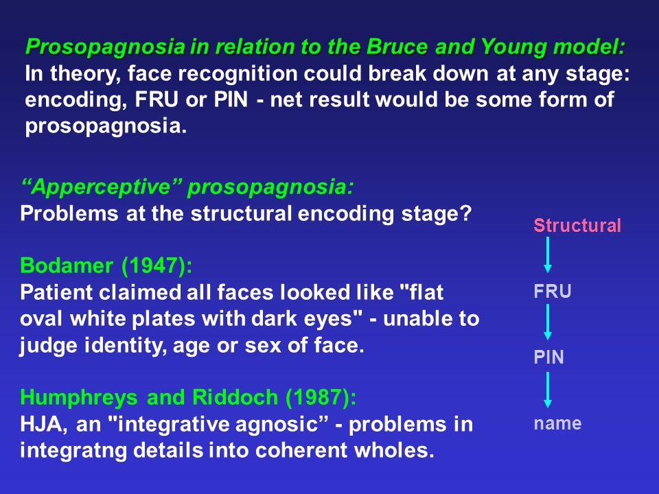 TransaxialCoronalSagittal The fusiform gyrus: The parahippocampal gyrus: TransaxialCoronalSagittal