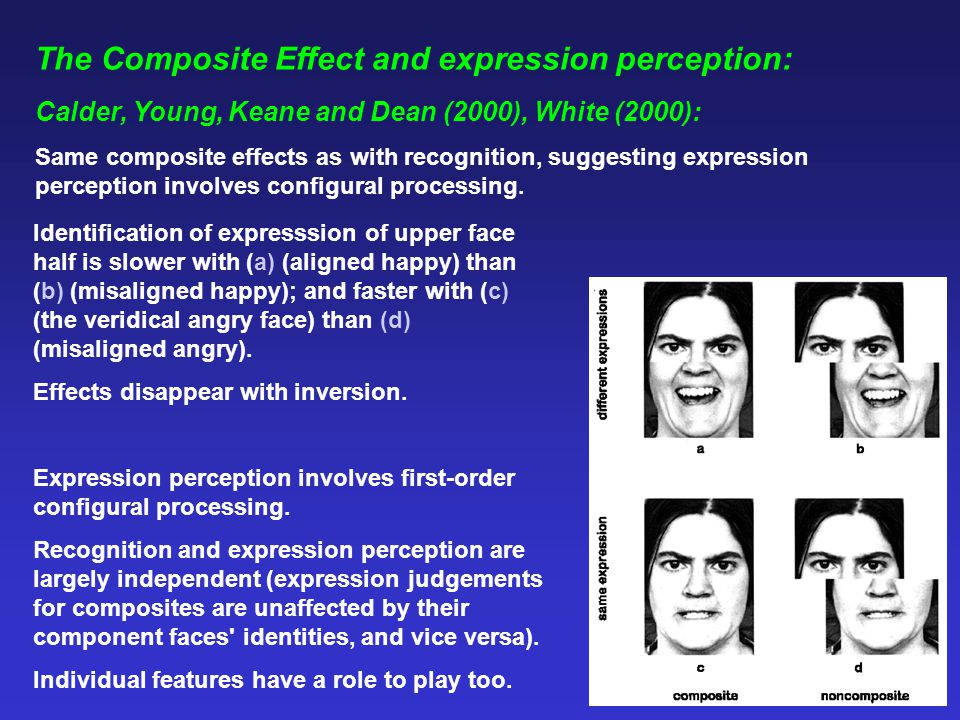 Conclusions: Overall, evidence supports RH dominance hypothesis; but also different components of the limbic system play important roles in emotional processing - amygdala - fear perception; ventral striatum - anger perception; insula - disgust perception.