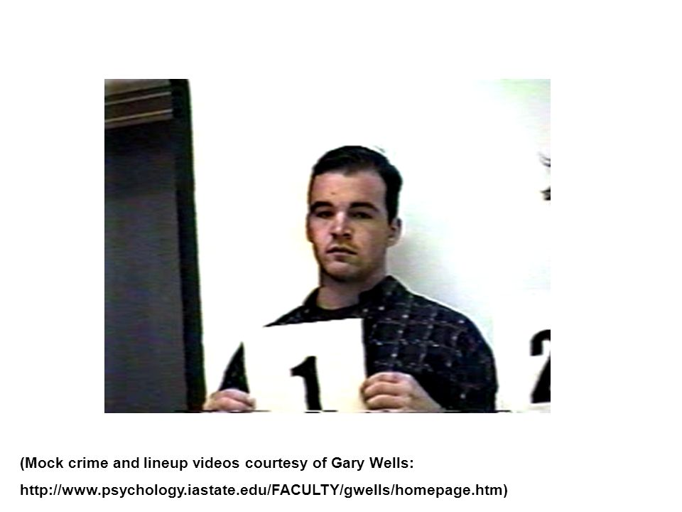 (Mock crime and lineup videos courtesy of Gary Wells: http://www.psychology.iastate.edu/FACULTY/gwells/homepage.htm)
