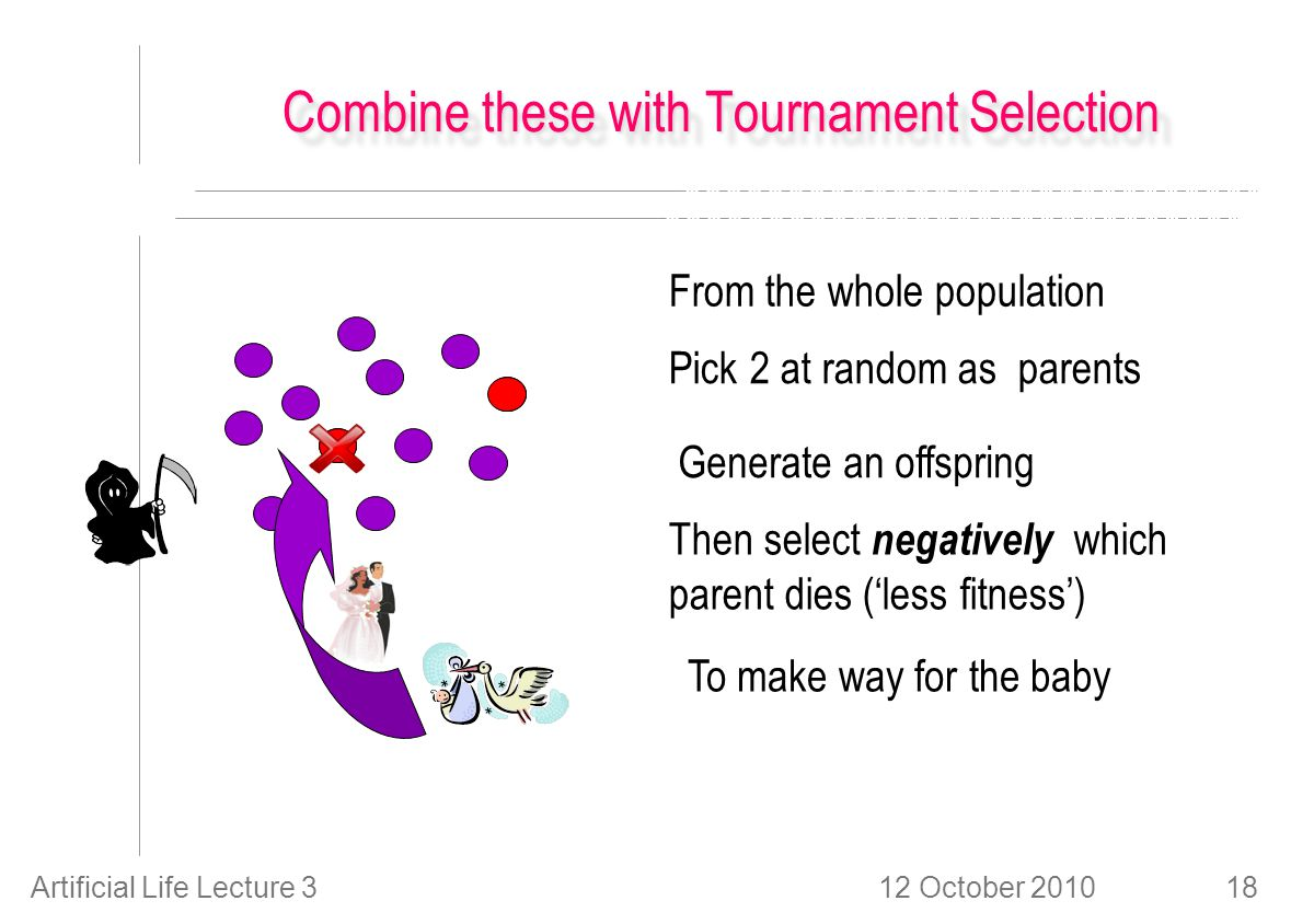12 October 2010Artificial Life Lecture 318 Combine these with Tournament Selection From the whole population Pick 2 at random as parents Generate an offspring Then select negatively which parent dies ('less fitness') To make way for the baby