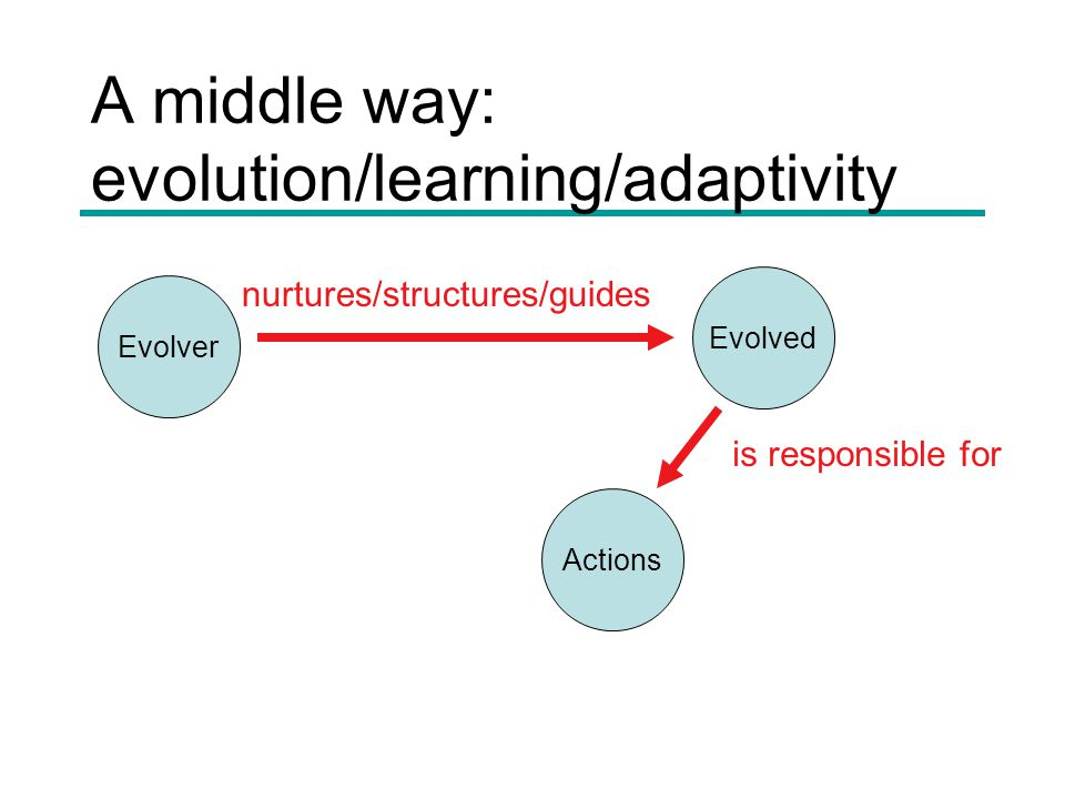 A middle way: evolution/learning/adaptivity Evolver Evolved Actions is responsible for nurtures/structures/guides