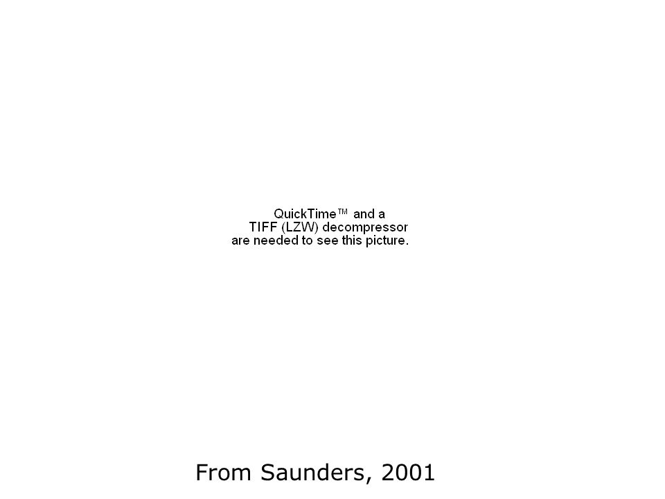 From Saunders, 2001