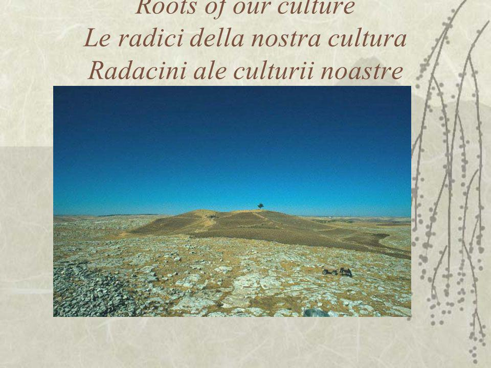 Roots of our culture Le radici della nostra cultura Radacini ale culturii noastre