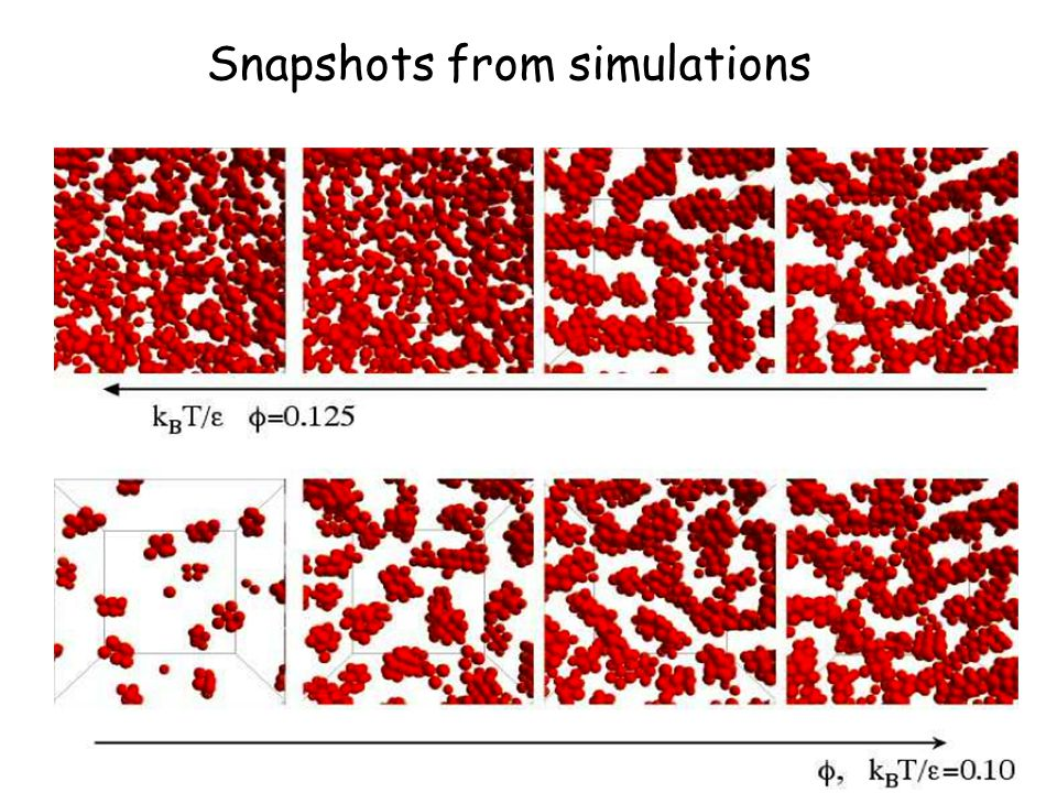 Snapshots from simulations