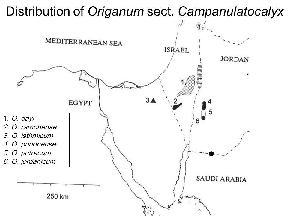 Avinoam Danin © Distribution of Origanum sect. Campanulatocalyx 1.