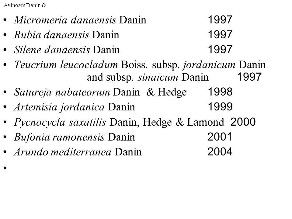 Avinoam Danin © Micromeria danaensis Danin 1997 Rubia danaensis Danin 1997 Silene danaensis Danin 1997 Teucrium leucocladum Boiss.