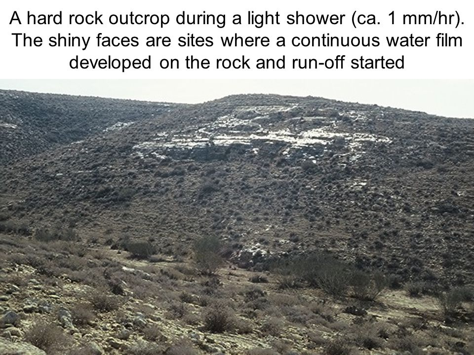 Avinoam Danin © A hard rock outcrop during a light shower (ca.