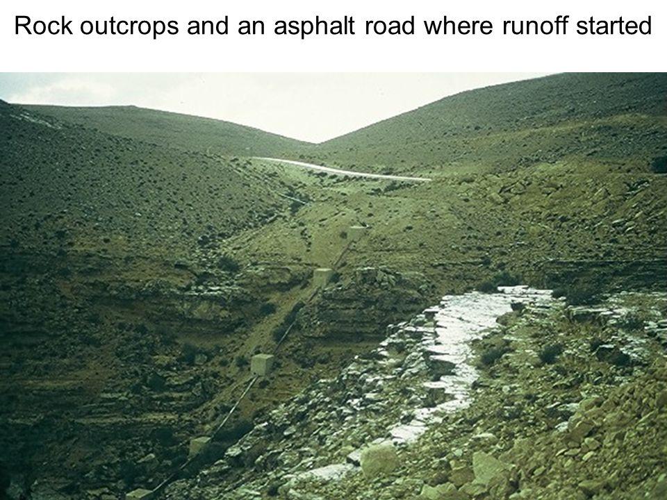 Avinoam Danin © Rock outcrops and an asphalt road where runoff started