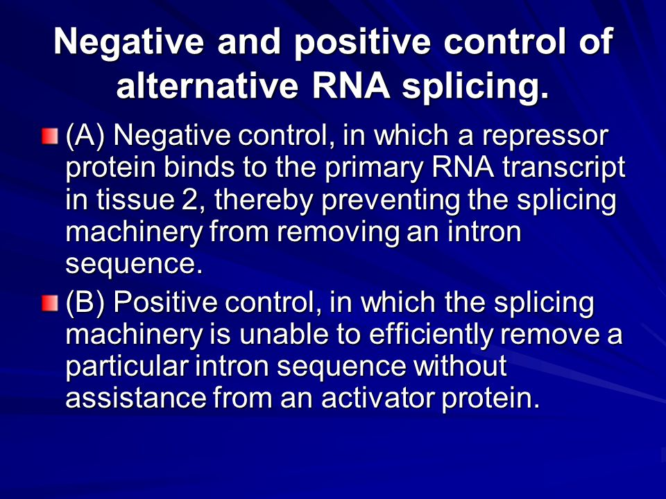 Negative and positive control of alternative RNA splicing. (A) Negative control, in which a repressor protein binds to the primary RNA transcript in t