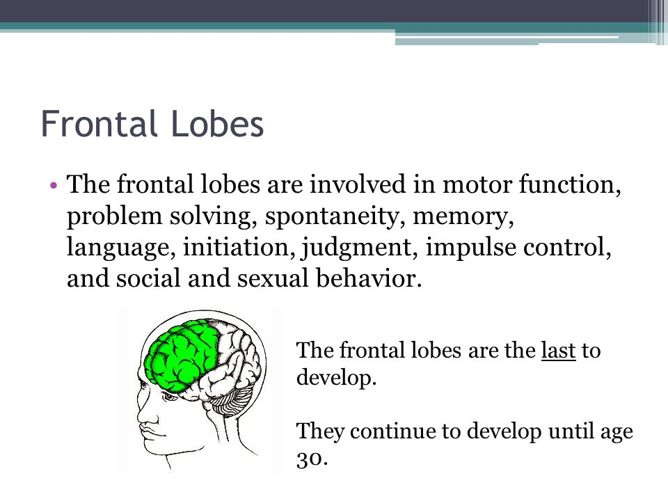 Frontal Lobes The frontal lobes are involved in motor function, problem solving, spontaneity, memory, language, initiation, judgment, impulse control,